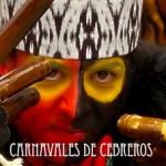 Carnavales de Cebreros 2014