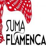 Suma Flamenca 2014